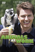 Animals at Work DVD cover